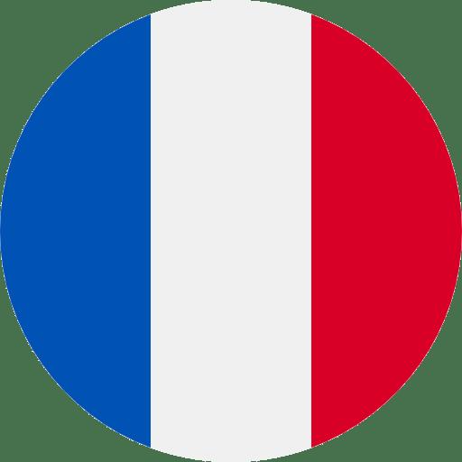 Understanla french Translation